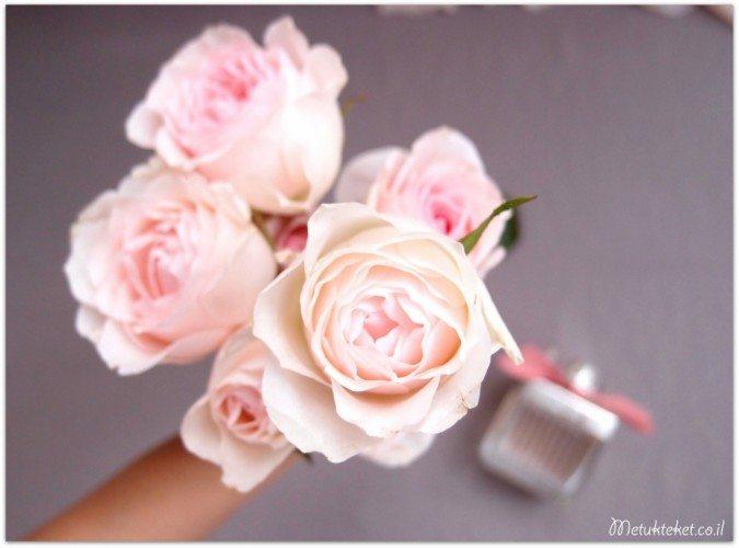 roses de Chloe, אהבה, קלואה
