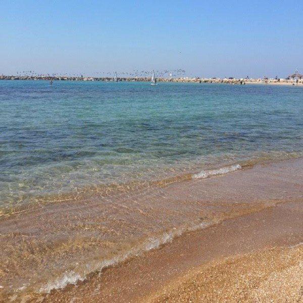 חוף הילטון תל אביב